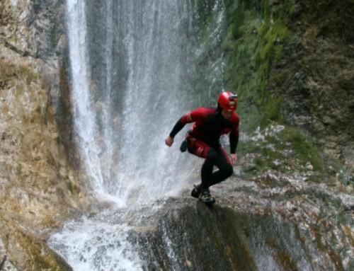 The Wild Canyon Globošak